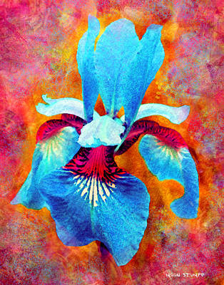 Garden Fiesta Poster by Moon Stumpp