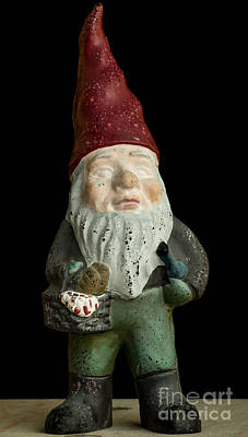 Garden Gnome Poster by Edward Fielding