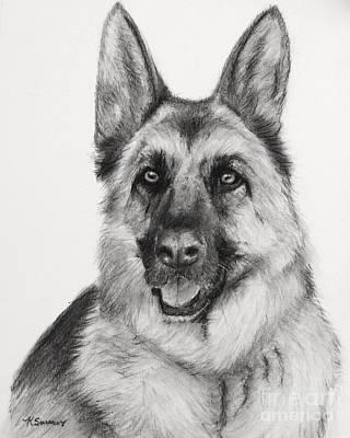 German Shepherd Drawn In Charcoal Poster by Kate Sumners