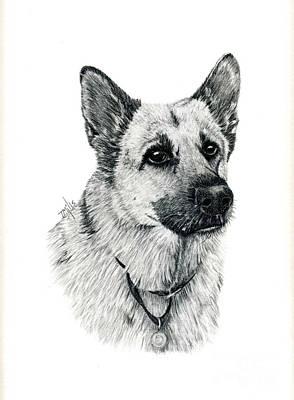 German Shepherd Poster by Terri Mills