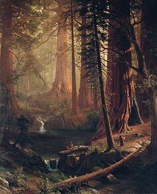 Giant Redwood Trees Of California Poster by Albert Bierstadt