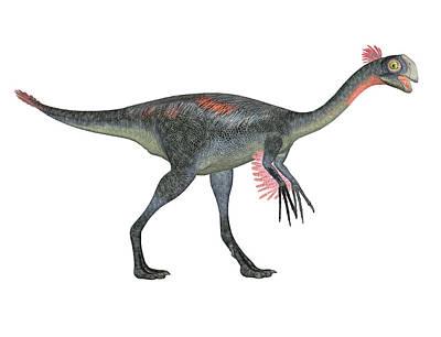 Gigantoraptor Dinosaur Poster by Friedrich Saurer
