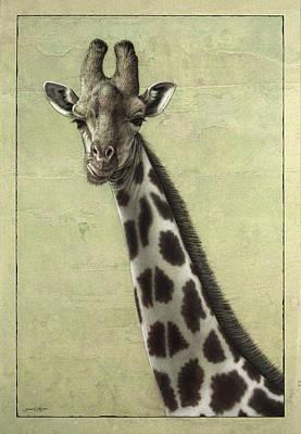 Giraffe Poster by James W Johnson