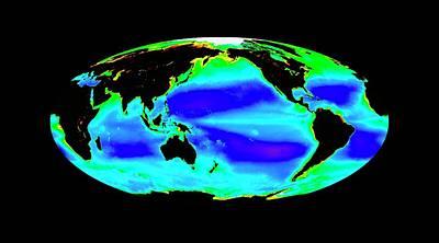 Global Chlorophyll Levels Poster by Nasa/seawifs/geoeye