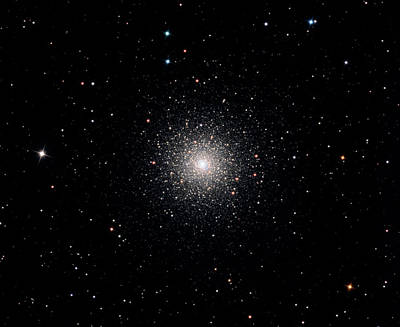 Globular Cluster Ngc 1851 Poster by Damian Peach