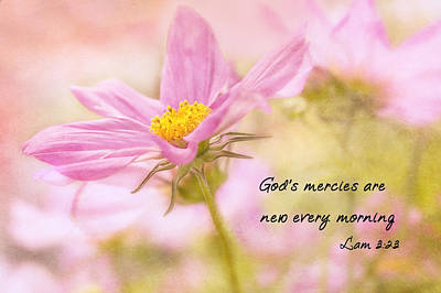 God's Mercies Poster by Mary Jo Allen