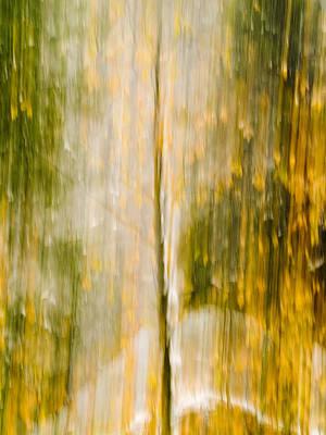Golden Falls  Poster by Bill Gallagher