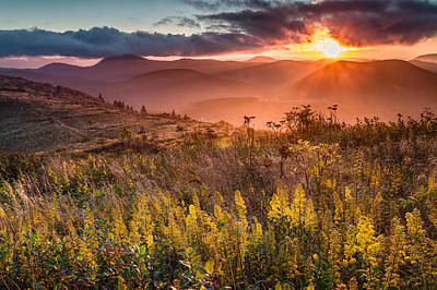 Golden Glory Poster by Rob Travis