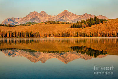 Golden Mountains  Reflection Poster by Robert Bales