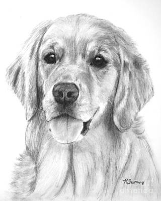 Golden Retriever Jessie Adult Poster by Kate Sumners