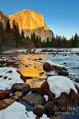Golden Sunset - El Capitan In Yosemite National Park. Poster by Jamie Pham