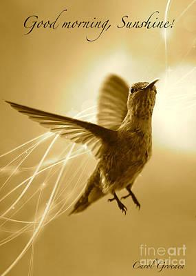 Good Morning Sunshine Poster by Carol Groenen
