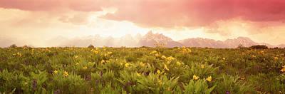 Grand Teton Park, Wyoming, Usa Poster by Panoramic Images