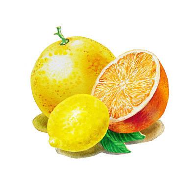 Grapefruit Lemon Orange Poster by Irina Sztukowski