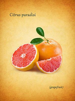 Grapefruit Poster by Mark Rogan