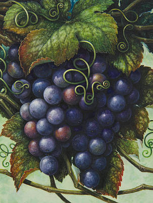 Grapes Poster by Lynn Bywaters