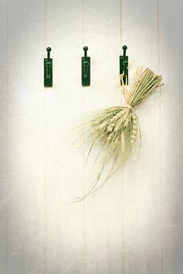 Grasses Poster by Amanda Elwell