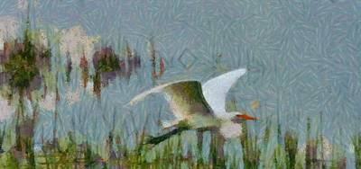 Great Egret Painting Poster by Dan Sproul