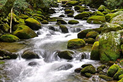 Green Flowing Stream Poster by Frozen in Time Fine Art Photography