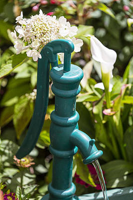 Green Water Pump Poster by Garry Gay