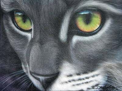 Grey Lady Poster by Darren Robinson