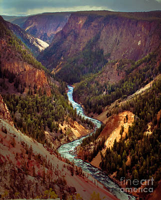 Grand Canyon Of The Yellowstone Poster by Robert Bales