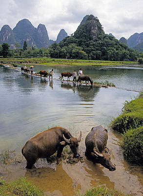 Guangxi Crossing 3 Poster by Dennis Cox ChinaStock