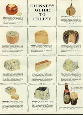 Guinness Guide To Cheese Poster by Georgia Fowler