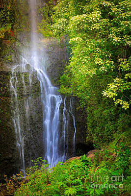 Hana Waterfall Poster by Inge Johnsson