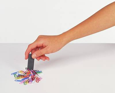 Hand Holding A Magnet Poster by Dorling Kindersley/uig