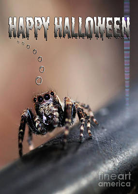 Happy Halloween For The Spider Lovers Poster by Kaye Menner