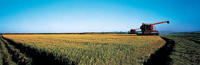Harvested Rice Field Glenn Co Ca Usa Poster by Panoramic Images