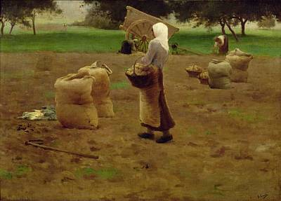 Harvesting Potatoes Oil On Canvas Poster by Henri Lerolle