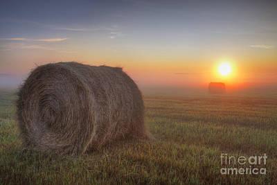 Hay Bales On A Foggy Alberta Morning Poster by Dan Jurak