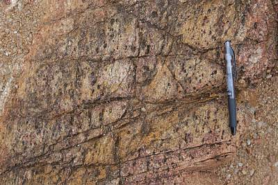 Heavily Jointed Gneiss Outcrop Poster by Science Photo Library