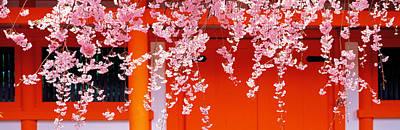 Heian-jingu Kyoto Japan Poster by Panoramic Images