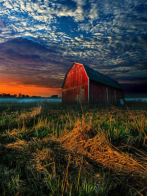 Here Comes The Light Poster by Phil Koch
