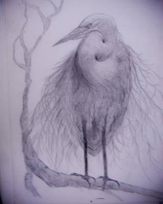 Heron Poster by Suzie Hanscom
