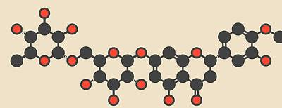 Hesperidin Citrus Flavanone Molecule Poster by Molekuul
