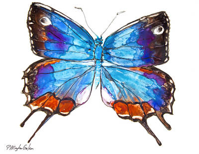 Hewitson's Blue Hairstreak Butterfly Poster by Patricia Allingham Carlson