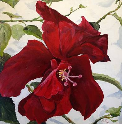 Double Hibiscus Poster by Alan Lakin