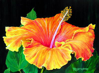 Hibiscus Poster by Tanja Ware