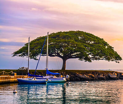 Hickam Harbor View Poster by Lisa Cortez