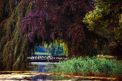 Hidden Shadow Bridge At The Pond. Park Of The De Haar Castle Poster by Jenny Rainbow