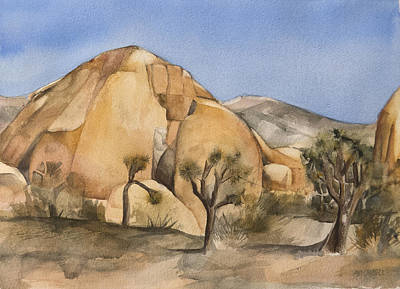 Hidden Valley In Joshua Tree Poster by Lynne Bolwell