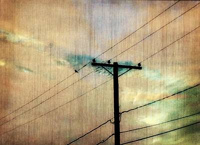 High Wire Poster by Lori Bourgault