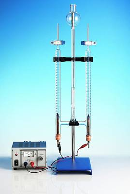 Hoffman Voltameter For Electrolysis Poster by Science Photo Library