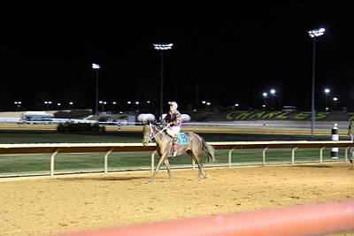 Hollywood Casino At Charles Town Races - 121223 Poster by DC Photographer