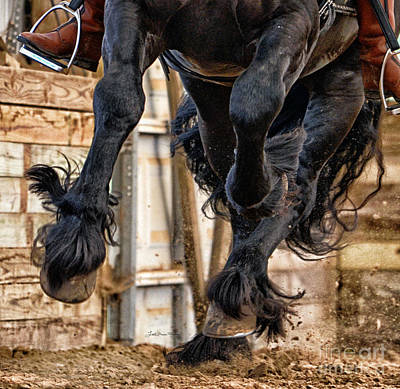 Hooves And Feathers Of Friesian Stallion Tonjes 459 Sport  Poster by Lori Ann  Thwing