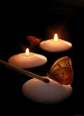 Hope Lights A Flame Poster by Chrystyne Novack